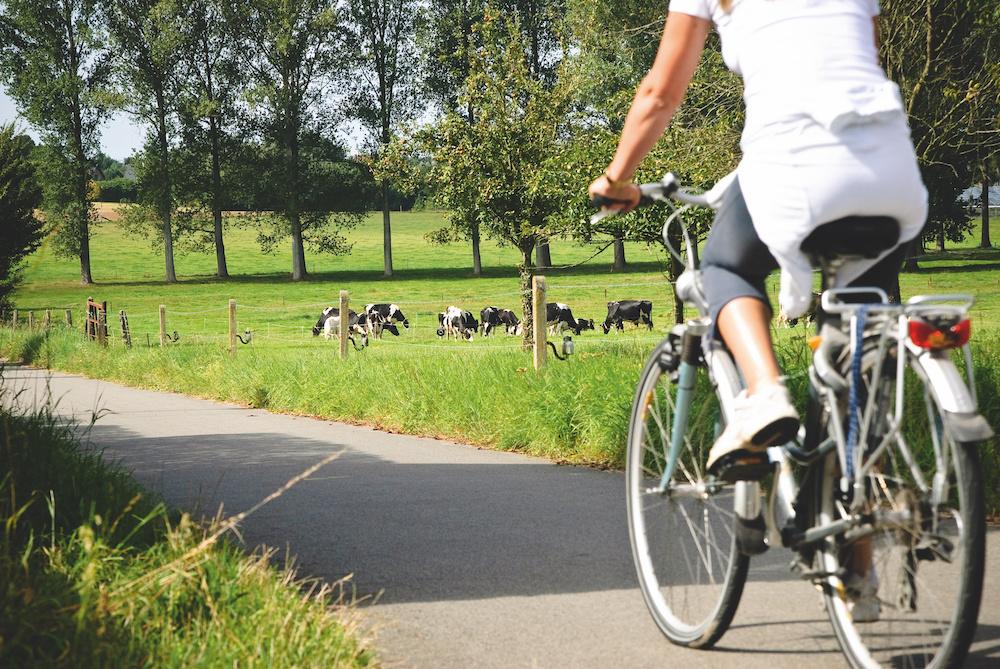 Fietsen in het Pajottenland, Lander Loeckx-Toerisme Vlaams-Brabant