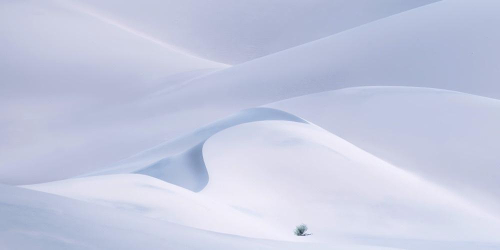 ., Greg Boratyn, The 10th EPSON International Pano Awards via photopublicity.com