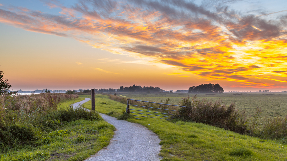 Friesland, Getty Images