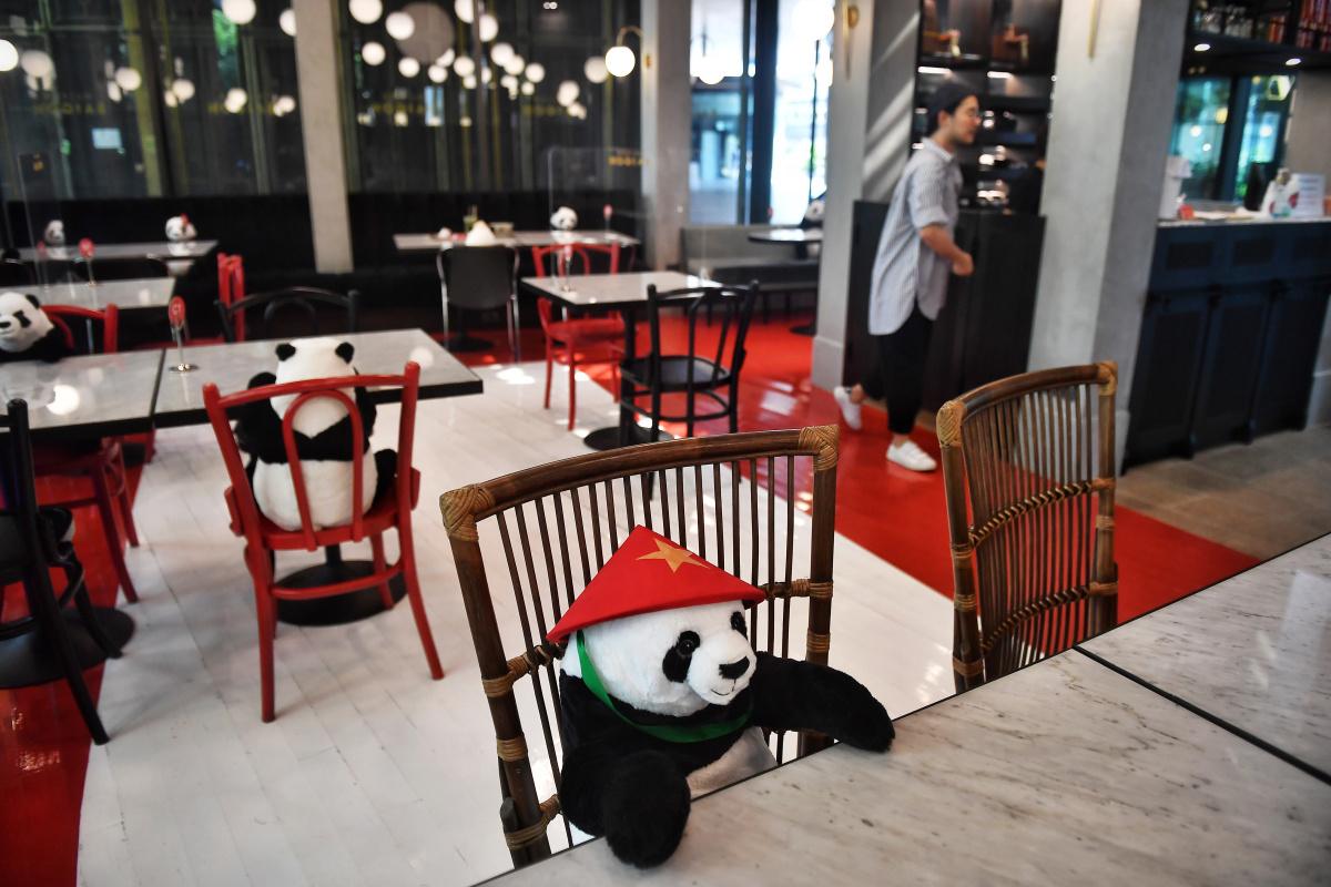 Pandabeer, AFP