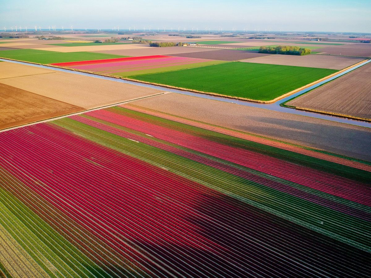 Flevoland, Getty Images