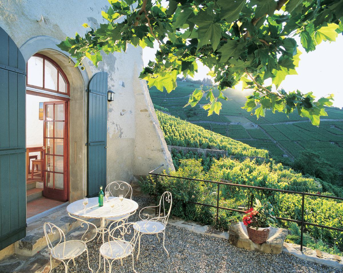 Terrasse dane le vignoble, Régis Colombo