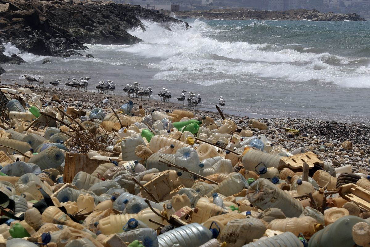 Plasticvervuiling, Getty Images
