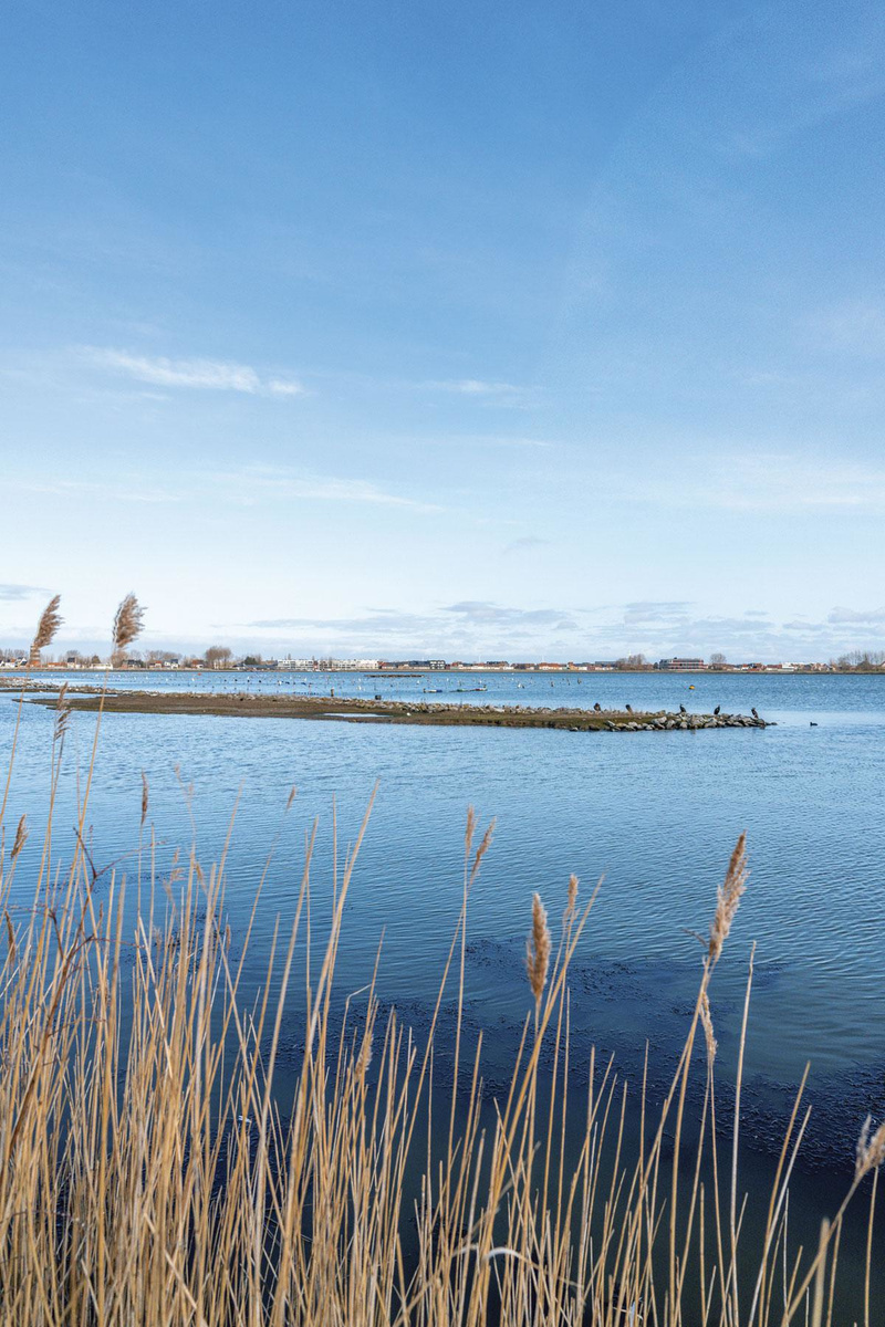 """Entre parcs et polders, le """"ruban vert"""" permet de découvrir un arrière-pays ostendais pour le moins surprenant., sdp"""