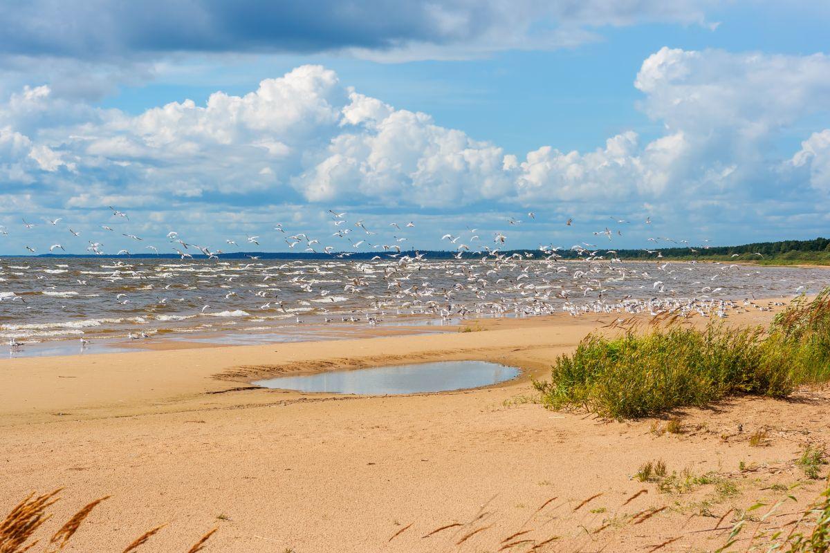 Peipus meer, Getty Images