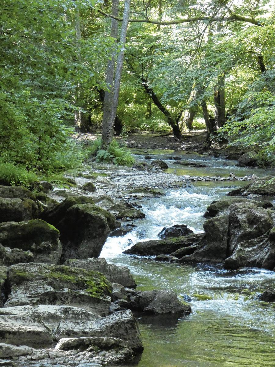 Wilde riviertjes blijven publieks-trekkers, SGR - J. MAQUET