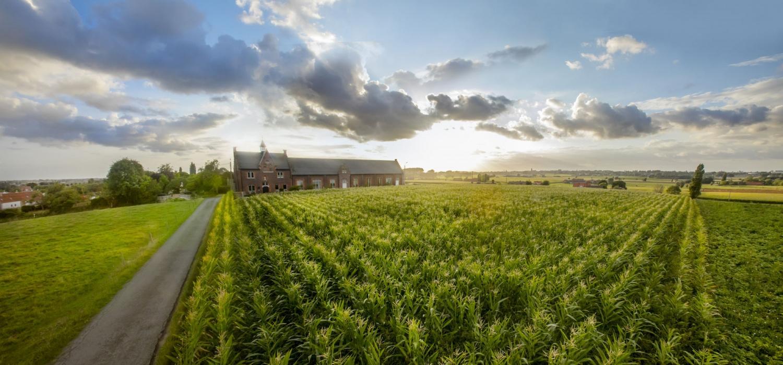 Een beschermd landschap van veldwegen, minidorpjes en molens., Westtoer APB