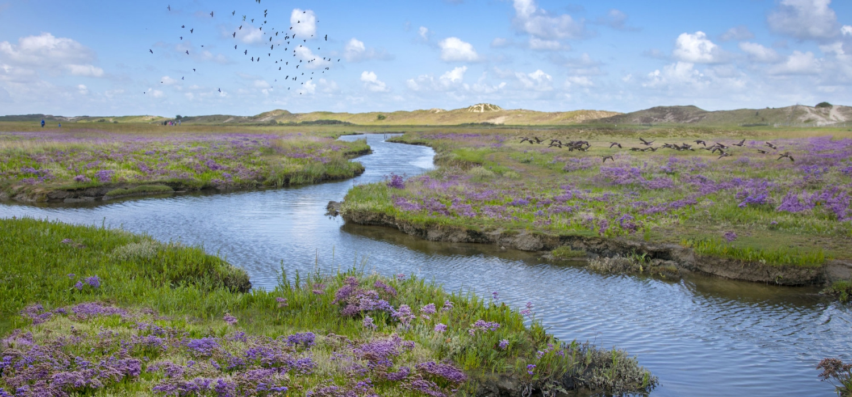 Deze must hoeft geen introductie meer maar blijft een van de mooiste Vlaamse landschappen dankzij de regelmatige overstromingen., Westtoer APB