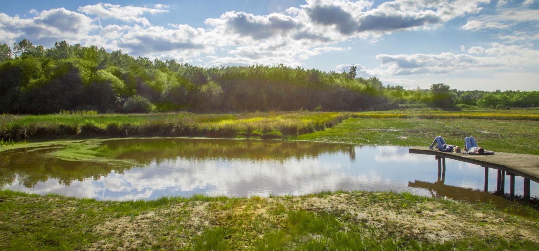 Natuurreservaat Heideveld-Bornebeek ligt in het dichtst beboste stuk West-Vlaanderen, met provinciedomein Bulskampveld., Westtoer APB