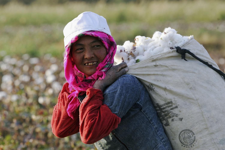 Travailleuse ouïghour dans les champs de coton de la province de Xinjiang, en Chine, Getty Images