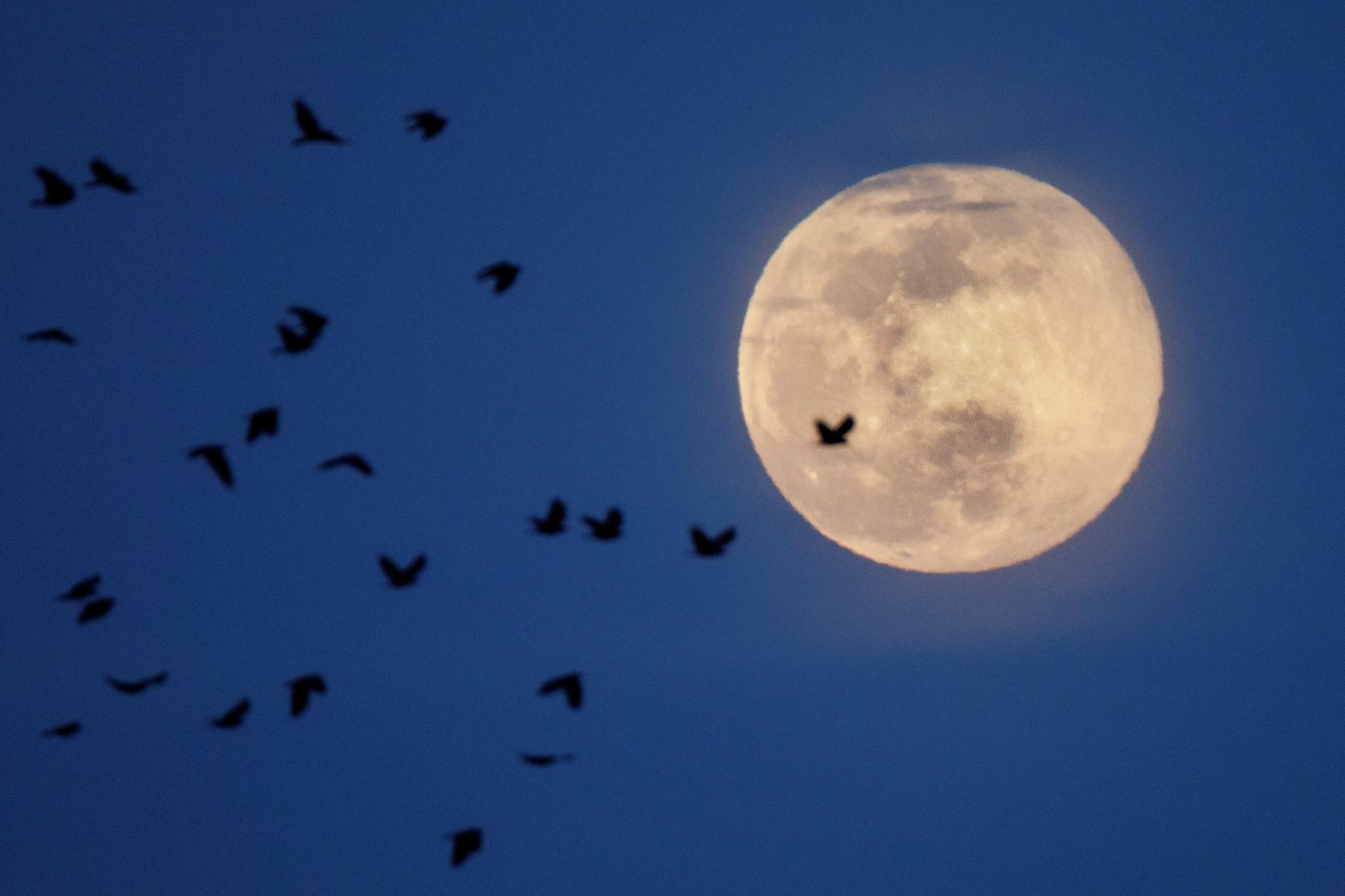 Super Lune 2020., Reuters