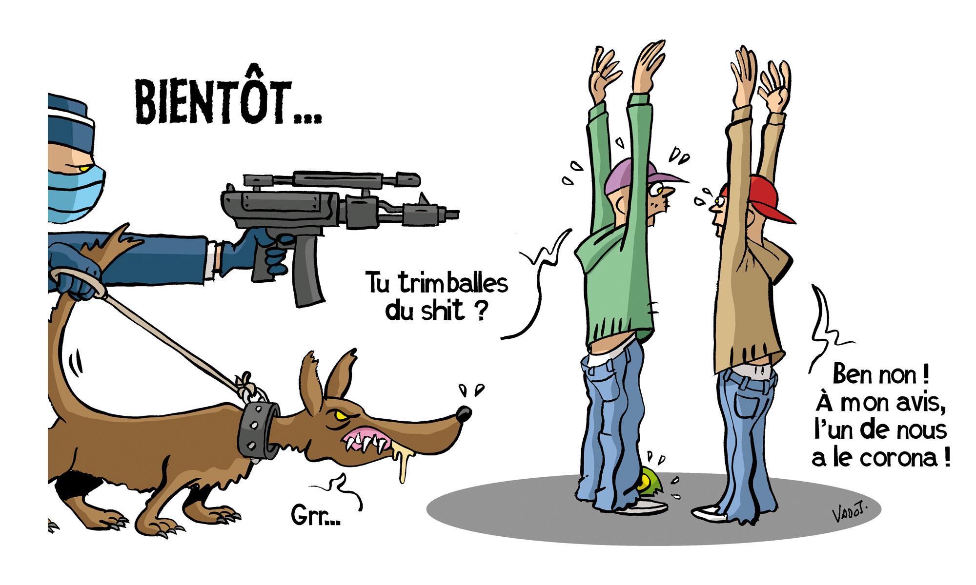 Des chiens sont entraînés à reconnaître le corononavirus., Vadot