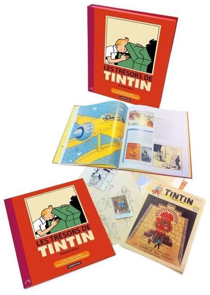 Ce superbe ouvrage retrace la genèse des aventures du petit reporter du Petit Vingtième et brosse, en filigrane, le portrait de son génial et talentueux créateur, Hergé. , Livre