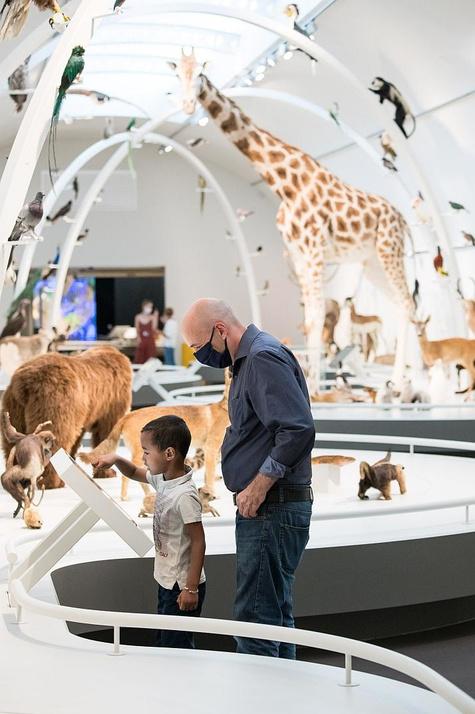 """La galerie """"Planète vivante"""" du musée des sciences naturelles., Musée des sciences naturelles"""