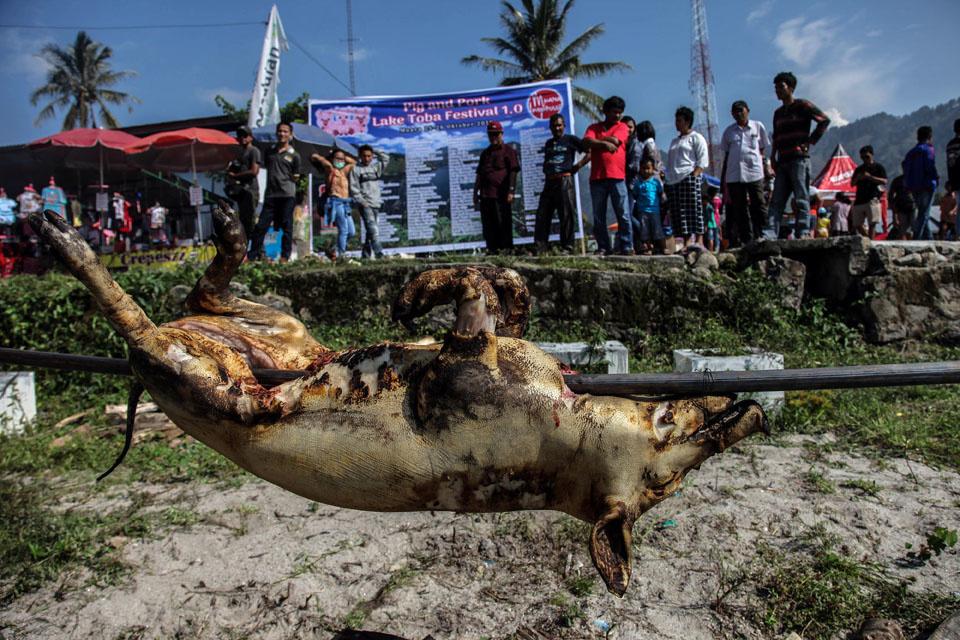 Festival du porc et du cochon près du lac Toba, AFP