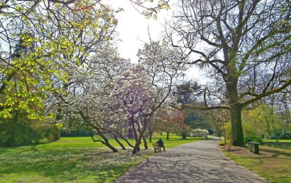 Parc de Mariemont, Parc de Mariemont